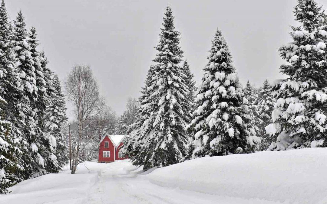 White Christmas (Tardor 2020)